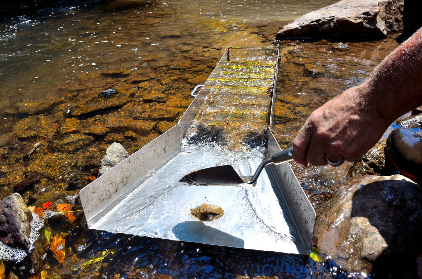 Gold panning with a sluice box in a river